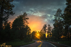 Lighting the way (Gavmonster) Tags: nikon nikond7000 d7000 gswphotography landscape clouds sky land weather orange sunset silhouette extremesky gold trees blue arizona road yellow lines usa unitedstates goldenhour stormchaser stormchasing extremeweather