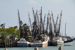 Shrimp boat huddle (Lindell Dillon) Tags: harbor port shrimpboats texas portisabel lindelldillon