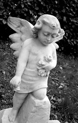 Angel (ERIK THE CAT Struggling to keep up) Tags: statues angels castlechurch stafford