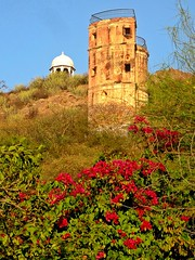 Udaipur Hill Side - Sunset Park (zorro1945) Tags: udaipur sunsetpark tower pagoda rajasthan india indie asia asie bourgainvillea red plant hillside hilltop
