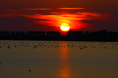 Sunset Oesterdam Tholen (Jarco Hage) Tags: sunset water zonsondergang zeeland zee zon tholen oesterdam byjarcohage