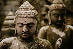 statues of the buddha (Sam Scholes) Tags: travel vacation bali sculpture art statue stone digital indonesia religious artwork nikon buddha religion buddhism stonecarving carving figure sculptures carvings d300 thebuddha murdastonecarving