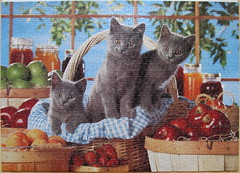 Canning Kitties (Leonisha) Tags: fruit cat chat puzzle katze jigsawpuzzle frchte marmelade