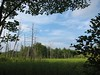 IMG_0496 (Dan Correia) Tags: amherst swamp clouds aperture 15fav topv111 topv333 topv555