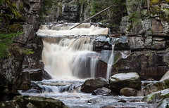 Wildeness..... (Pewald) Tags: longexposure nature norway forest river waterfall wilderness flickrawardgallery