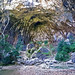 La cova de les Gralles