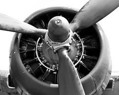 _MG_4927-2 (STElliott86) Tags: wwii b17 ww2 boeing bomber flyingfortress warbird radial memphisbelle radialengine