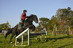 Hi ho, Benson....... (Taken-By-Me) Tags: horse girl jump jumping ride centre great arena event riding takenbyme pony rider equestrian trot canter menage gallop joules eccleston elswick greateccleston