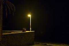 Nuit d'amour (Bernard Chevalier) Tags: mer couple solitude été nuit tristesse