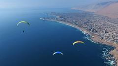 Photo by Dawn Westrum (GaryrBeach) Tags: paragliding chile2013