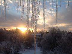 image (khoosh) Tags: trees winter sun house snow toronto ice nature sunrise artistic icestorm khashayar momentskhashayarkermanshahtorontoirannaturenight