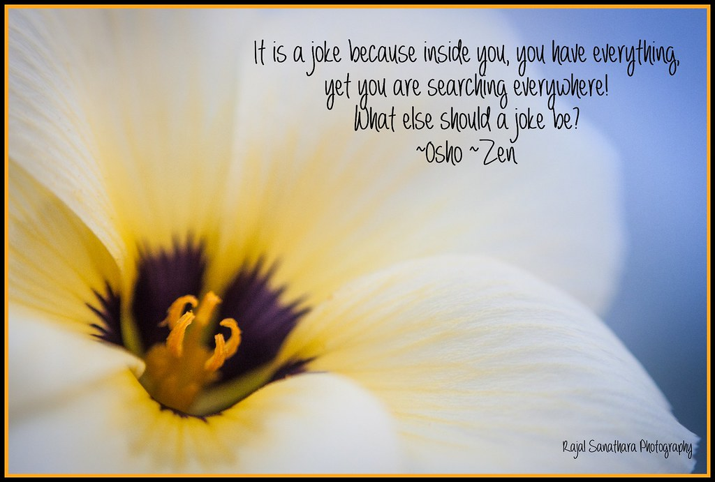 The World S Best Photos Of Osho And Zen Flickr Hive Mind