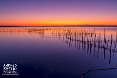 Un mar de agua dulce... (Andres Breijo http://andresbreijo.com) Tags: espaa valencia atardecer mar sigma 1770 anochecer reflejos albufera comunidadvalenciana sigma1770 canon60d sigmadc1770f284macrohsm