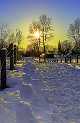 Rays of hope (mircea2309) Tags: winter hope hiver sunrays esperance greatphotographers rayondusoleil mygearandme mygearandmepremium mygearandmebronze mygearandmesilver mygearandmegold outstandingromanianphotographers blinkagain greaterphotographers