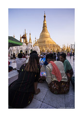 picture in picture (jrockar) Tags: street travel people woman 3 building girl architecture lady canon temple photography pagoda photo women shot mark candid shwedagon yangon burma buddhist iii capital picture documentary snap madness instant l 5d myanmar moment ef f4 1740 mk ordinary decisive f4l ordinarymadness