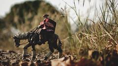 IMG_9292 (ChatchawanB.) Tags: threea thailand threealegion thailegion threeatoys tomorrowkings tk toy blind cowboy ghost horse outdoor deathmask