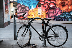 Linus Bicycle with Front Basket (Zach K) Tags: linus bicycle bike cycle velo black front wire basket fluevog store background with colorful mural nyc new york city newyorkcity fuji xt1 fujifilm soho brown leather seat nycbikes