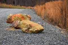 Day 58/365- 2017 Edition- Colorful Stones (Angela D Beck) Tags: day58 58365 3652017 project365 dailyphoto photoaday 27feb17 nikon d750 outdoors nc northcarolina highrocklake rock stone colorful orange warm gravel