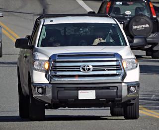 Toyota Tundra (AJM CCUSA)