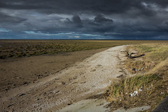 storm chaser (tabulator_1) Tags: southport beach