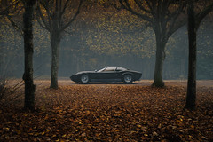 Lamborghini Miura SV - automne (JJ Micheli) Tags: 50mmf17 ambiancesombre blackmiura châteaudebreteuil k1 lamborghinimiurasv miurasvnoire pentaxsmca50mmf17 smcpentaxa50mmf17 allée alléesousbois ambianceorange darkmood diecast forest modelereduit scalemodel smcpentaxfa2870mmf28 vuedeprofil 2017 kyosho leaves miura pentaxk1 toy ad advertisement automne autumn contrast contraste côté dark driveway fall feuilles findaprèsmidi forêt illusion jouet lambo lightpainting miniature night orange profil publicité reflections reflet réflection scale sombre studio trees