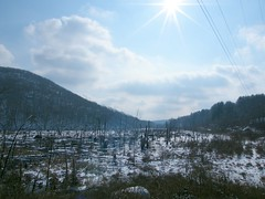 Winter Marsh (Stanley Zimny (Thank You for 26 Million views)) Tags: winter seasons snow landscape sky marsh