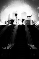 Ascendo (Fernando_PC) Tags: street man portugal silhouette backlight standing dark blackwhite flickr downtown pov lisbon low streetphotography silhouete baixa streetphotographer lowpov fernandopc