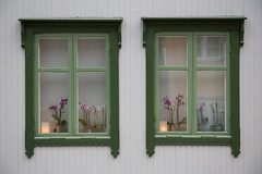 Rrosvindu #01 (H.Treider) Tags: windows norway town colorful pair small mining rros hkon vindu bergstaden treider