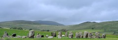 Stone circles & fertility hmmmm (Keith Grafton) Tags: nikon sheep cumbria lambs fertility v1 stonecircle swinside