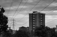 Spring 2013 - Morning in Milan (Melania_2011) Tags: city italy milan tower italia milano periferia lombardia adriano nord citta palazzi quartiere