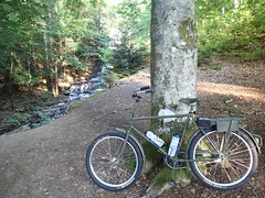 Bike (petrusko.rm) Tags: summer nature bike bicycle speed sweden military ss olympus single tg1 hunneberg