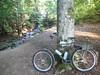 Bike (petrusko.rm) Tags: summer nature bike bicycle speed sweden military ss olympus single tg1 hunneberg