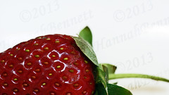 Strawberry (hanbphotography) Tags: light red summer white color colour green nature colors fruits crimson yellow fruit scarlet studio photography countryside photo leaf juicy yummy stem strawberry berry colorful picnic colours berries yum natural bright photos sweet vibrant background country harvest grow seed strawberries tasty seeds divine photographs photograph commercial crop backdrop scrumptious summertime produce colourful ruby lush product pure heavenly flaming grown luscious tasteful garnet flavour claret flavours immaculate sweetened flavourful hannahbennett goodtasting apetizing flavorsome flavory fullflavoured