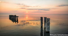 Lake Ontario - Remnants of a dock 3 (digithief) Tags: ontario water docks sunrise dock hamilton logs waterfalls lakeontario d800 tiffanyfalls shermanfalls fiftypointconservationarea remnantsofadock