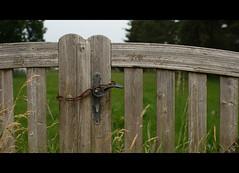 * (Henrik ohne d) Tags: wood grass handle gate lock rusty chain prerow dars eos400d ef28mmf18 july2013