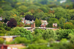 Toy-ronto's Rosedale. September Equinox (Katrin Ray) Tags: autumn trees summer orange brown toronto ontario canada green canon buildings maple colours sunny september ash elm rosedale toyland tiltshift autumnalequinox canonphotography 2013 photoshoptiltshift tilfshift ontariotrees crimsonkingmaple septemberequinox dreamscapesoftoronto katrinray miniaturestyle digimagic toyrontolife toyrontosrosedale