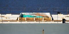 Calumet cargo (rexp2) Tags: boat ship greatlakes lakesuperior laker freighter selfunloading nikond300 duluthsuperiorharbor afsnikkor28300mmf3556gedvr vacation2013fall