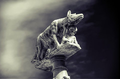 Model parent (Elliott Bignell) Tags: italien italy rome statue italia roman pillar romulus tuscany campo siena piazza toscana remus toskana piazzadelcampo spqr italibw