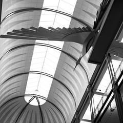 Inside a mall (photogreuhphies) Tags: usa film minnesota analog silver minneapolis hasselblad mn ilford fp4 80mm 500cm