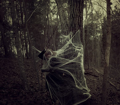 Prey (Day 269) (Samantha Pugsley) Tags: trees woman selfportrait black female fairytale forest self dark dead photography death evening spider trapped scary twilight woods kill escape web story help fantasy dreams horror nightmare prey feed 365 concept gown conceptual dreamlike trap myth struggle hunt frightened hunted 365days