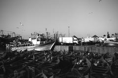 Scan-131230-0035-3.jpg (mathendrix) Tags: africa analog harbor blackwhite fishing ship marrakech nikonf3 essaouira marroco roll4 homedeveloping 2013 nikoncoolscan5000ed agfaortho25
