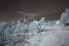 L1000404 Stromlo IR (i-lenticularis) Tags: cv214 leicam8 infrared canberra australia m8