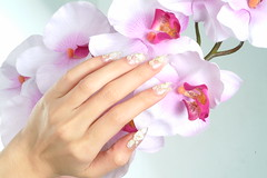"Nail Design <a style=""margin-left:10px; font-size:0.8em;"" href=""http://www.flickr.com/photos/113576083@N04/11792681396/"" target=""_blank"">@flickr</a>"