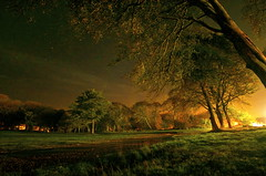 Castle Green in Autumn, Stornoway - Chris Murray