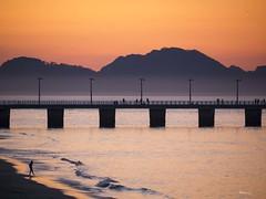 Playa do Vao (Ramy.) Tags: sunset sea espaa chien sun sol island atardecer four cuatro lumix soleil spain coucher panasonic perro galicia galiza micro puesta espagne islas vigo th