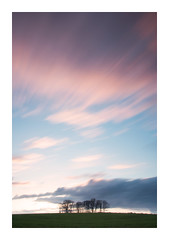 Spring Breeze (A-D-Jones) Tags: wood pink trees sun field grass set clouds landscape movement long exposure dusk crop