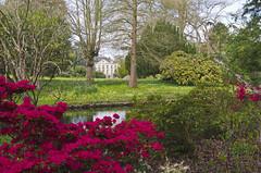 imgp6575fsr (al253) Tags: light red green garden rouge pentax lumiere paysage