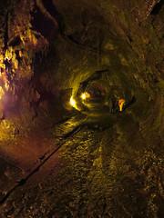 Totally Tubular (John 3000) Tags: nature dark hawaii natureza tube tunnel hawaiivolcanoesnationalpark nationalparks kilauea thurstonlavatube nhuku