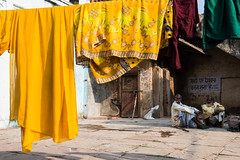 (Jordy B) Tags: india man color asia streetphotography asie couleur homme inde madhyapradesh northindia travelphotography indedunord orchh northemindia