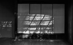 Shadows on Shoji (Tim Ravenscroft) Tags: shoji screen shadows kotoin daitokuji kyoto japan blackwhite monochrome